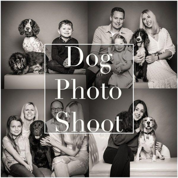 dog-photography-northampton